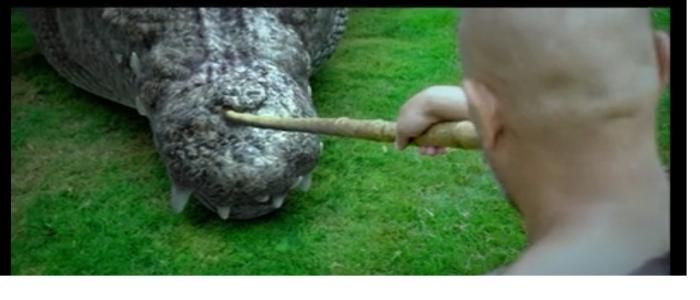 Croc 10
