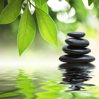 Zen stones pyramid on water surface, green leaves over it